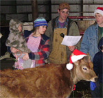 Caroling to the Cows