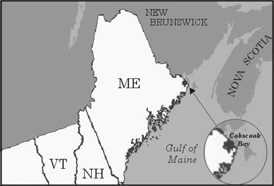 Map of where Cobscook Bay is