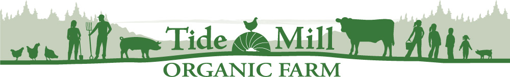 Tide Mill Organic Farm