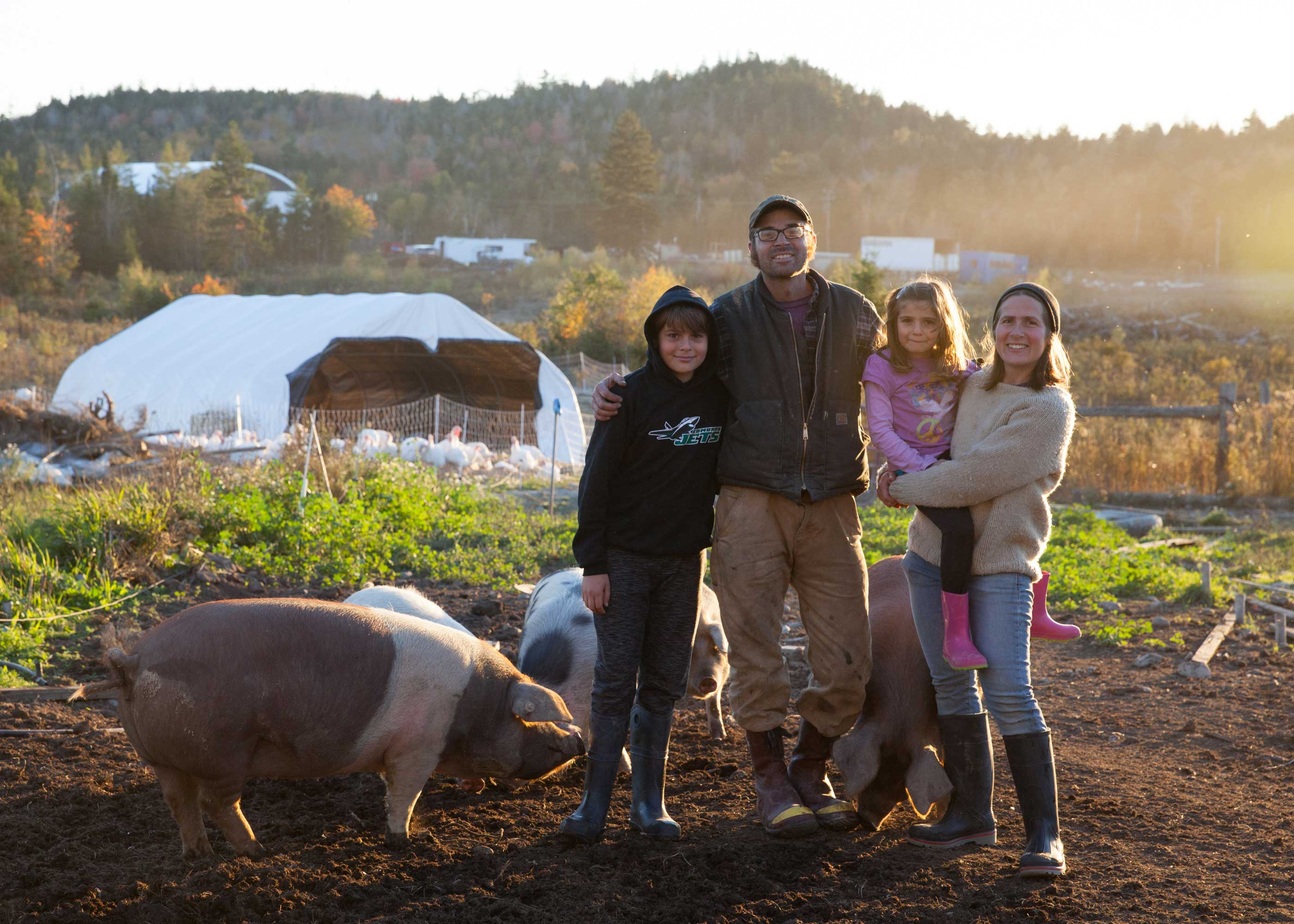 Tide Mill Organic Farm - Our Family (with pigs)