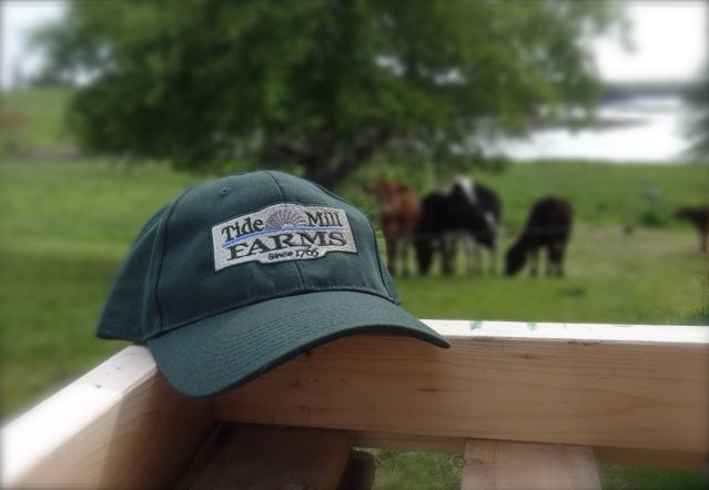 Tide Mill Organic Farm Hat